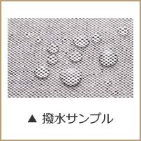 謦・豌エ繧オ繝ウ繝励Ν