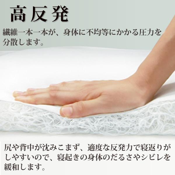 9122(83cm蟷�)__9125(91cm蟷�)繝上ャ繝斐�シ縺昴h縺九●