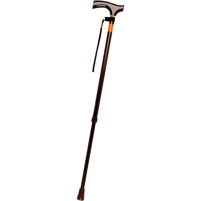 E-234ピッチ杖